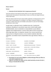 Plinius über den Vesuvausbruch Klausur Brief 2