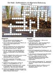 Wald - allgemeine Bedeutung und Stoffkreisläufe