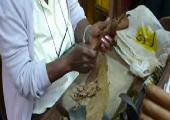 Herstellung einer Zigarre