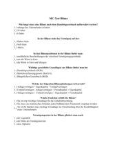 Multiple Chioce Test Bilanz