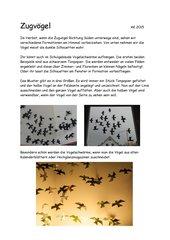 Zugvögel  -  Vogelschwarm aus Papiersilhouetten