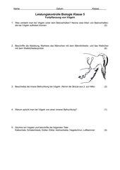 Vögel Balzverhalten/Fortpflanzung Leistungskontrolle