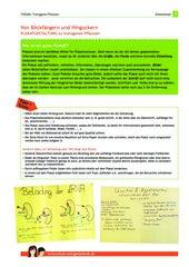Arbeitsblatt: Plakate anfertigen zu Gentechnik-Pflanzen