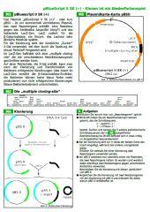 Angewandte Biotechnologie: Plasmidklonierung