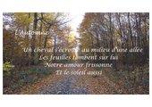 Herbstgedicht - Prévert