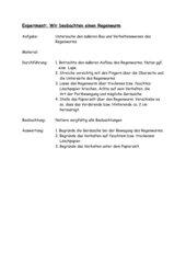 Experiment Regenwurm