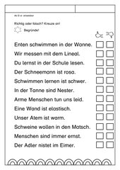 Leseübungsblatt zur Fibel 'Mimi die Lesemaus' Bayern ab Ei ei - Sätze richtig/falsch
