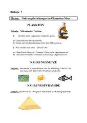 Aufgaben zu Nahrungsnetzen im Ökosystem Meer