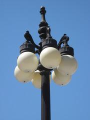 Straßenlaterne - Straßenlaterne, Beleuchtung, Lampe, Kugel, Laterne, Licht, Glühbirne, leuchten, Beleuchtung, Energie, elektrisch, Elektrizität