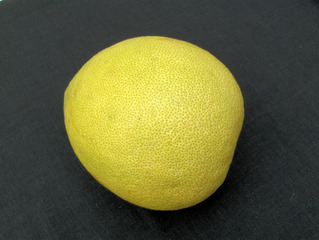 Pomelo #1 - Pomelo, Pampelmuse, Grapefruit, Citrus, Citrusfrucht, Vitamine, gesund, gelb, süß, Frucht, Obst, Nahrungsmittel