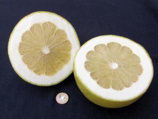 Pomelo #2 - Pomelo, Grapefruit, Pampelmuse, Citrus, Citrusfrucht, Obst, Frucht, gesund, süß, gelb, Schale, Fruchtfleisch, Nahrungsmittel