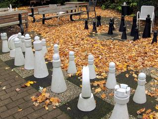 Schachspiel - Schach, Schachspiel, Freiluft, Figuren, Spiel, Herbst, Laub, König, Dame, Läufer, Springer, Freizeit, schwarz, weiß