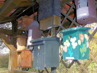 Nisthilfen #1 - Nisthilfen, Vogelhäuschen, nisten, brüten, Höhle, Vögel, Natur, Naturschutz