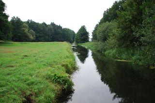 Flußlandschaft#1 - Fluss, Landschaft, Wasser, Sommer, Gewässer, Spiegelung, Perspektive
