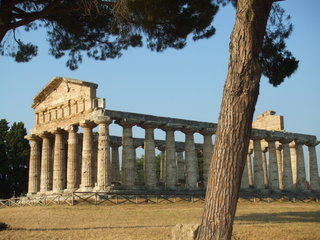 Ceres Tempel - Griechenland, Italien, Pästum, Paestum, Ceres Tempel, Säulen, römisch, Göttin, Ackerbau, Ehe, Tod