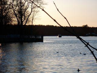 Spree - ein Berliner Gewässer - Fluß, Wasser, Gewässer, Spree, Müggelspree, Impression, Ansicht, Meditation