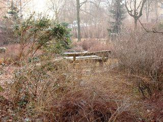 Frühlingserwachen - Stille vor dem Aufbruch - Natur, Frühling, Frühlingserwachen, Bank, Platz, Gedanken, Meditation, Ruhe, Stille, Ort