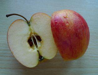 Kerngehäuse #2 - Apfel, Frucht, Makro, Kerngehäuse, Samen, Samenkern, Kern, Apfelkern