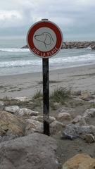 Hundeverbot am Strand - Frankreich, civilisation, plage, chien, panneau, Strand, Hund, Kreis, Kreisring, Verkehrszeichen, Verbotszeichen