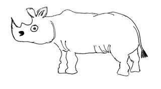 Nashorn - Natur, Tier, Afrika, Nashorn, Anlaut N, Asien, Unpaarhufer, groß, schwer, Dickhäuter