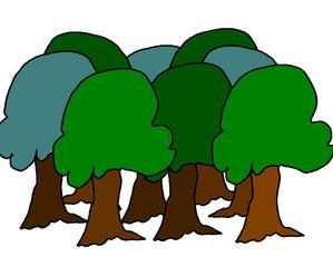 Wald # farb - Wald, Baum, Bäume