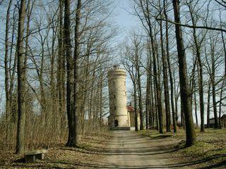 Ferberturm Gera - Gera, Thüringen, Turm, Wald, Architektur