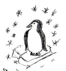 Pinguin - Tier, Südpol, Pinguin, Anlaut P, Antarktis, Seevogel
