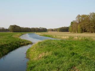 Flusslandschaft#2 - Fluss, Flusslandschaft, Frühling, Weide, Wiese, Feld, Wald