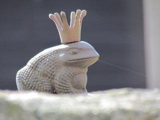 Froschkönig - Froschkönig, Märchen
