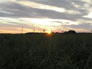 Sonnenuntergang am Achterwasser#1 - Sonnenuntergang, Sonne, Abend, Usedom