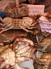 Meeresspinne und Seekuh - centollo, buey, mariscos, mercado, Meeresspinne, Seekuh, Fischmarkt, Markt