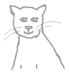 Katze Ausmalbild - Katze, Haustier, Kopf, weiß, Wörter mit tz