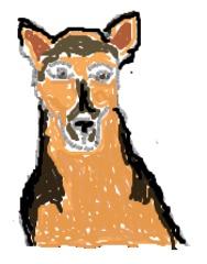 Schäferhund_bunt - Hund, Haustier, Schäferhund, Deutscher Schäferhund, bunt