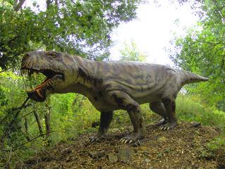 Dinosaurier in einem Dino-Park #2 - Inostrancevia - Urzeit, Dinosaurier, Saurier, groß, ausgestorben, Urzeittier, Urzeittiere, gefährlich, Krallen, Evolution, Drache, Biologie, Dino, Fossil, Inostrancevia, Perm