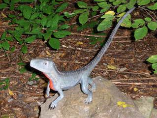 Dinosaurier in einem Dino-Park #4 - Euparkeria - Urzeit, Dinosaurier, Saurier, groß, ausgestorben, Urzeittier, Urzeittiere, gefährlich, Krallen, Echse, Evolution, Drache, Biologie, Dino, Fossil, Euparkeria, Trias, Fleischfresser