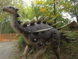 Dinosaurier in einem Dino-Park #9 - Kentrosaurus - Urzeit, Dinosaurier, Saurier, groß, ausgestorben, Urzeittier, Urzeittiere, Echse, Evolution, Drache, Biologie, Dino, Fossil, Stacheln, Platten, Kentrosaurus, Jura