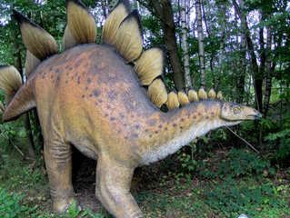 Dinosaurier in einem Dino-Park #12 - Stegosaurus - Urzeit, Dinosaurier, Saurier, groß, ausgestorben, Urzeittier, Urzeittiere, Echse, Evolution, Drache, Biologie, Dino, Fossil, Platten, Pflanzenfresser, Stegosaurus, Jura