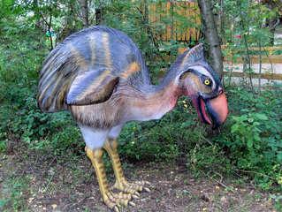 Dinosaurier in einem Dino-Park #15 - Phorusrhacus - Urzeit, Dinosaurier, Saurier, groß, ausgestorben, Urzeittier, Urzeittiere, gefährlich, Krallen, Evolution, Biologie, Dino, Fossil, Vogel, Raubvogel, Flügel, flugunfähig, Tertiär, Phorusrhacus