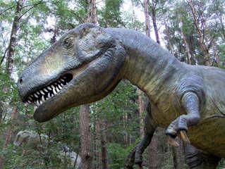 Dinosaurier in einem Dino-Park #16 - Tyrannosaurus - Urzeit, Dinosaurier, Saurier, groß, ausgestorben, Urzeittier, Urzeittiere, gefährlich, Krallen, Echse, Evolution, Drache, Biologie, Dino, Fossil, Zähne, Tyrannosaurus, Fleischfresser, Kreide