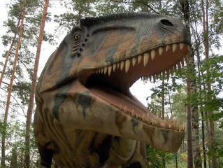 Dinosaurier in einem Dino-Park #18 - Giganotosaurus - Urzeit, Dinosaurier, Saurier, groß, ausgestorben, Urzeittier, Urzeittiere, gefährlich, Zähne, Echse, Evolution, Drache, Biologie, Dino, Fossil, Giganotosaurus, Fleischfresser, Kreide