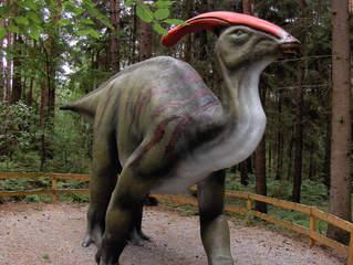 Dinosaurier in einem Dino-Park #22 - Parasaurolophus - Urzeit, Dinosaurier, Saurier, groß, ausgestorben, Urzeittier, Urzeittiere, Evolution, Drache, Biologie, Dino, Fossil, Parasaurolophus, Platte, rot, Kreide