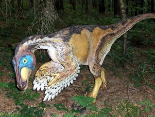 Dinosaurier in einem Dino-Park #23 - Protoceratops - Urzeit, Dinosaurier, Saurier, groß, ausgestorben, Urzeittier, Urzeittiere, gefährlich, Krallen, Echse, Evolution, Drache, Biologie, Dino, Fossil, Federn, Protoceratops, Kreide, Pflanzenfresser