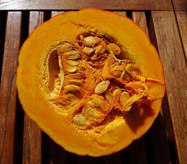 Hokkaidokürbis - Kürbis, Kürbiskerne, Herbst, Gemüse, Cucurbita, Kletterpflanze, einjährig, krautig, Kerne, Samen, Samenkerne