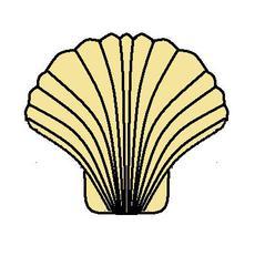 Muschel - Muschel, Jakobsmuschel, Meer, Strand, Anlaut M, Wörter mit sch