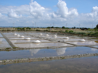 Salzgewinnung - Salzgewinnung, Salzgarten, Bretagne, La Baule, Meersalz, Kochsalz, Speisesalz, Marais salants, Saline, Verdunstung, verdunsten, Natriumchlorid, Chemie