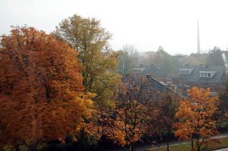 Herbst über den Dächern - Herbst, Aussicht, Dach, Dächer, herbstlich, bunt, diesig, neblig, Laubfärbung