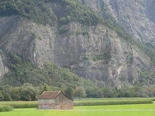 Falte - Falte, Geologie, Schichtung, Fels, Gestein, geologische Falte, Alpen, Faltengebirgsbildung