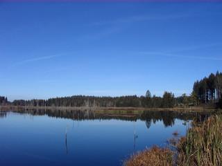 Moor#3 - Moor, Landschaft, Landschaftsform, Hochmoor, Feuchtgebiet, Wasser, Sumpf, Naturschutzgebiet, Spiegelung