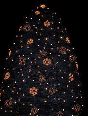 Weihnachtsbaum - Weihnachtsbaum, Tannenbaum, Christbaum, Weihnachten, Schmuck, Sterne, Kerzen, Lichter, geschmückt, Nadelbaum, Winter, Baum