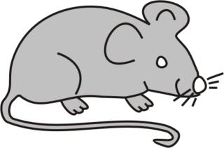 Maus grau - Maus, Nagetier, Anlaut M, fröhlich, Illustration, Farbe, grau